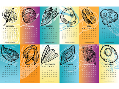 Happy New Year! outline color design nature illustration