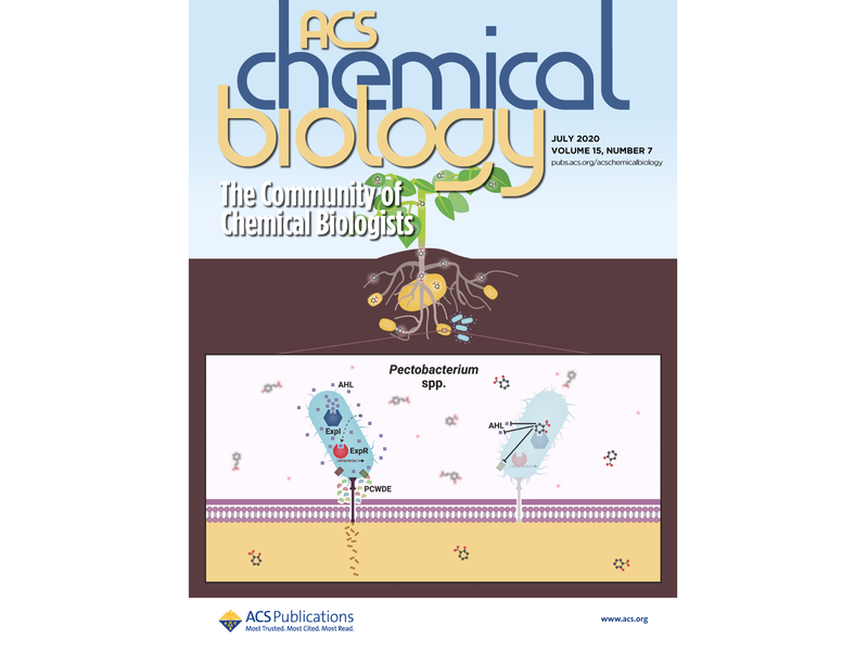 ACS Chemical Biology Art for Volume 15, Issue 7
