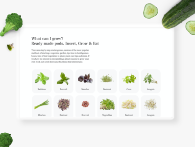 Healthy Food website website design user interface user experience ui madewithxd healthy healthyrecipes healthfood foodwebsite food app food flat design adobe xd