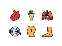 Human Organ icons