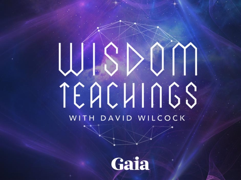 Wisdom Teachings Series Logo / Show Visual by Sunny Berro on