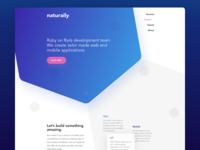 Hexagon Landing Page