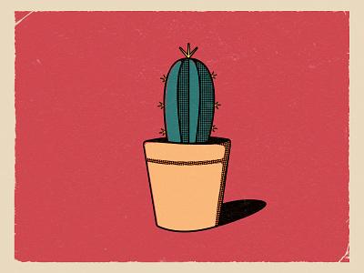 Cactus. vector design green spikes plant november illustration cactus