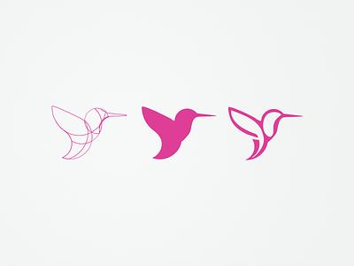 Hummingbird circular grids logo progress logo vector bird colibri kolibri hummingbird