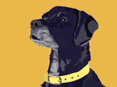 The dog band illustration minimal illustrator branding art vector flat graphic design design