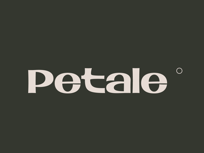 Typeface rebranding typography poster font family fiminine unusual modern elegant typeface font