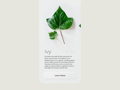 Neumorphic app screen | Leaf identification minimal ui  ux ui design uidesign mobile trend plant branding minimalistic light design app uiux ui neumorphic skeumorphic