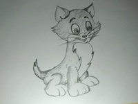 Cartoon Cat Drawing