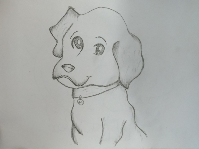 Cartoon Dog Puppy Drawing By Mlspcart On Dribbble