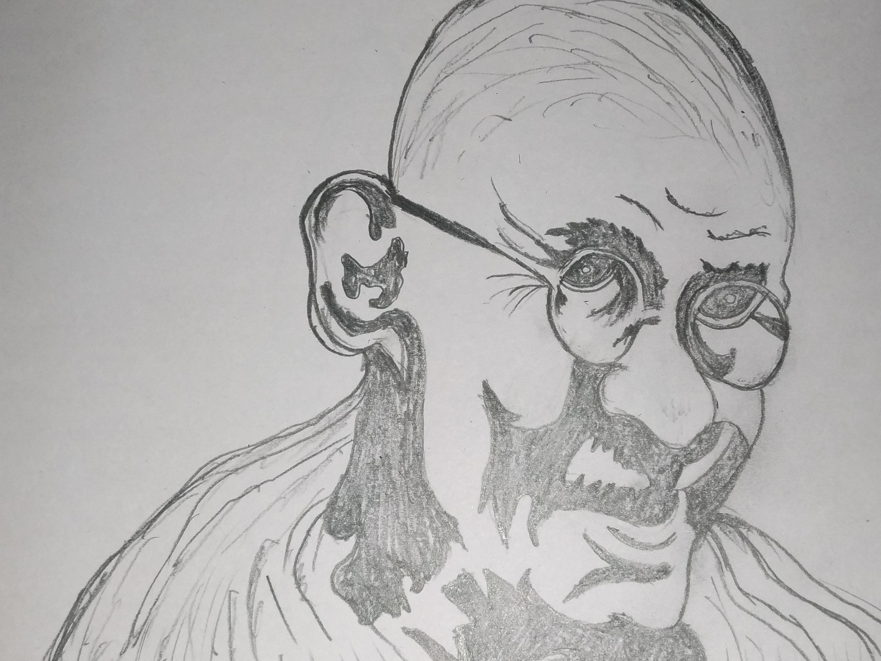 Mahatma gandhi art