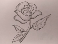 Rose Flower Art