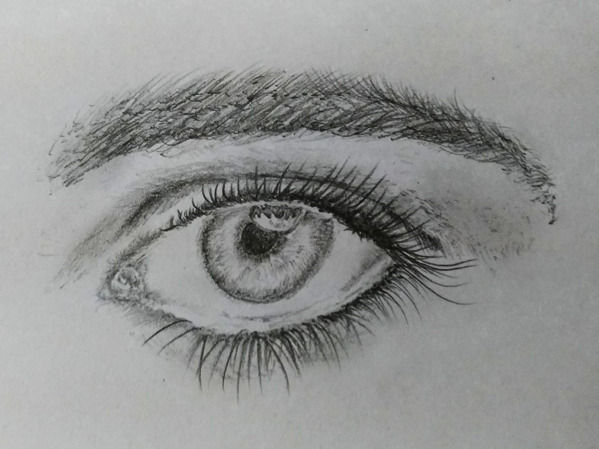 Realistic eye art illustration hand art pencil woman logo sketch drawing pencil art design sketch creative