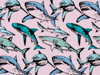 Endangered Sharks Pattern