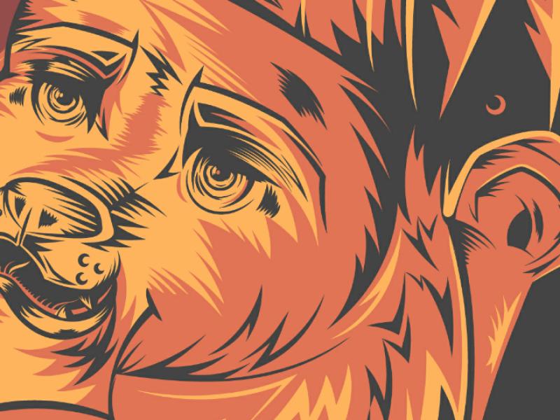 Grizzly bear beard cap face grizzly orange bear