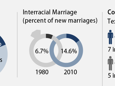 Interracial Marriage blue infographic