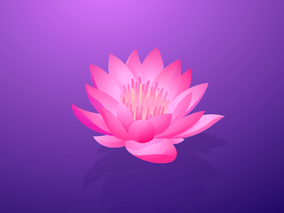Lotus david wehmeyer illustration purple gradients adobe illustrator vector flower lotus