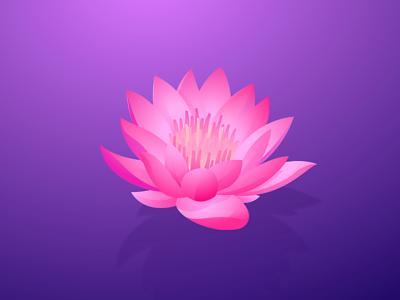 Lotus david wehmeyer illustration purple gradients adobe illustrator vector flower lotus