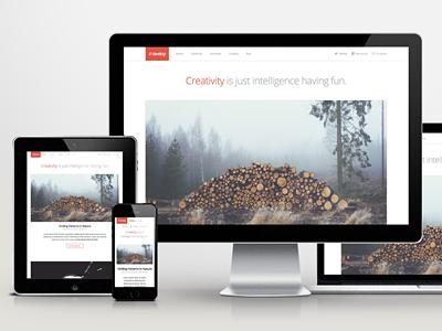Develop WordPress Theme wordpress theme web website