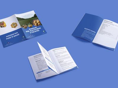 Brochure for Celim Organisation