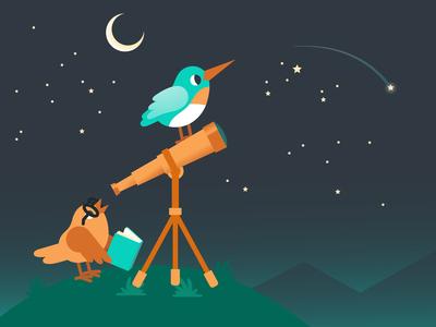 Flockjay Stargazing