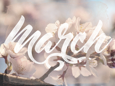 March ligatures flowers spring march months custom typography custom type type pen tool lettering typography