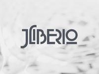 Geometric Logo for a Singer / Songwriter