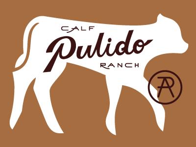 Pulido Calf Ranch Portfolio ranch monogram handlettering wordmark logomark