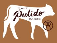 Pulido Calf Ranch Portfolio