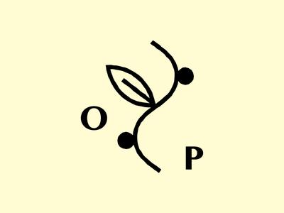 Oliveira Properties TX Branding