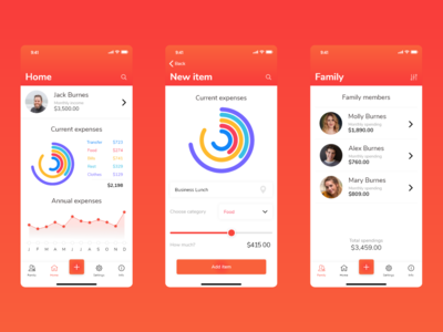 Money monitoring app