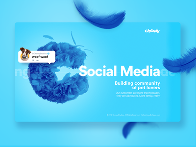 Chewy Studios cute landing web layout design website social feather blue chewy ux ui
