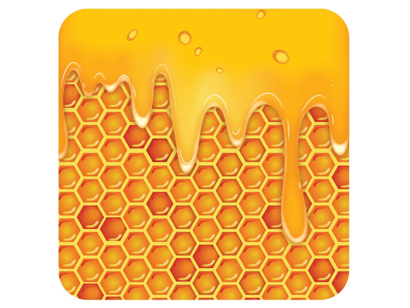 Honeycomb illustrator art illustrator illustration vector art vector graphic design graphic art design