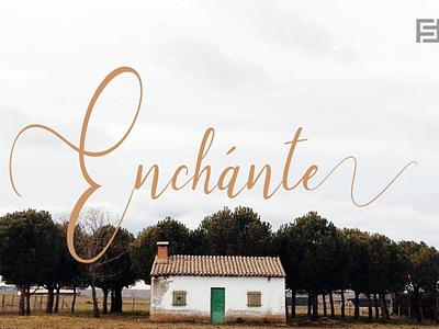 Enchante - Lovely Handwritten Font handwriting handwritten handmade webfonts typography typeface. lettering typeface designer typefaces typeface design typeface type selling sell minimalist minimal font family font design fonts font designova