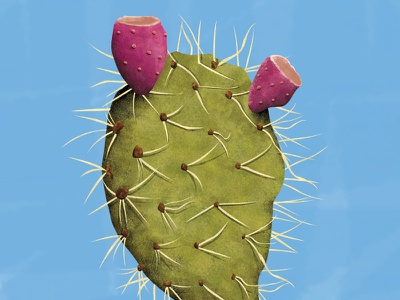Going hard in the paint! digital paint photoshop cactus wip illustration prickly pear