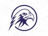 Eagle Eye logo mark