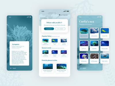 Diving App