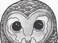 The Owlfly