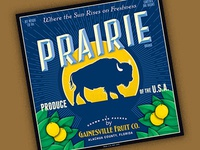 Prairie Alt