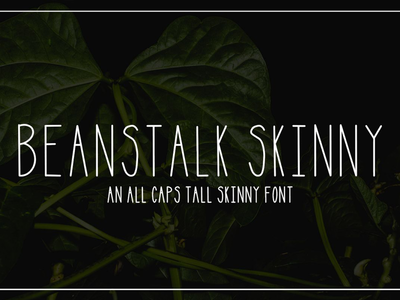 Beanstalk Skinny Font font typogaphy monoline hand lettered ipad skinny tall serif