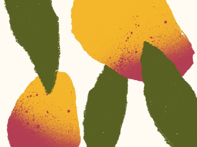 Torn Mango branding fruit mango torn texture illustration design color