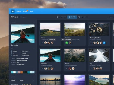 Dark Projects Manager ui kit landing dark dashboard profile graph table apps web manager photography ui