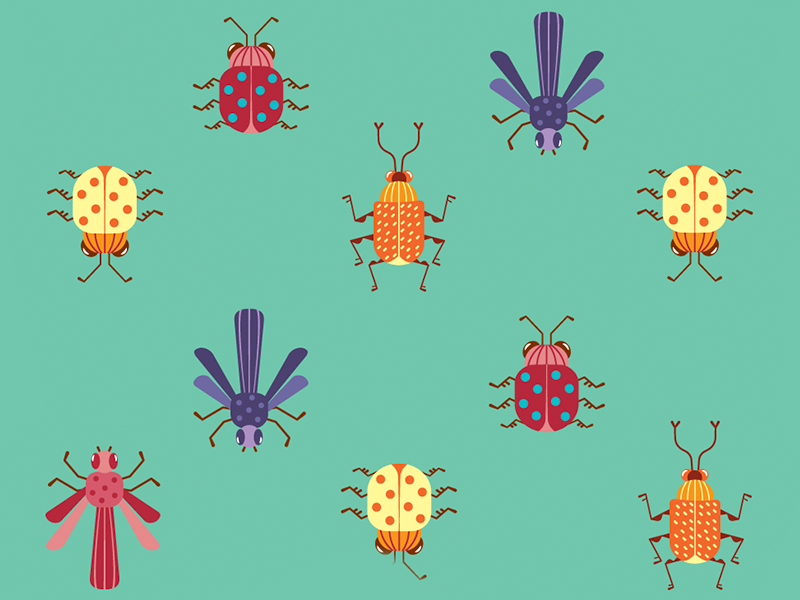 Insects - Pattern animal pattern insects bugs vector flat illustration