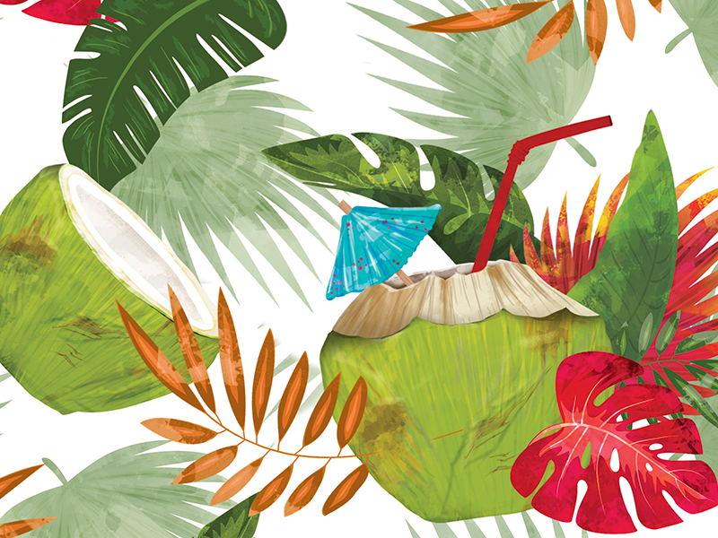 Coconuts Paradise costa rica design digital brush and ink palm nature drink culture leaf tropic coconuts illustration brush flat pattern