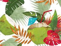 Coconuts Paradise