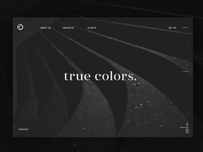 Landing Page True Colors stachecka marta page landing white black minimal