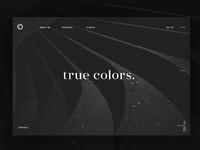 Landing Page True Colors