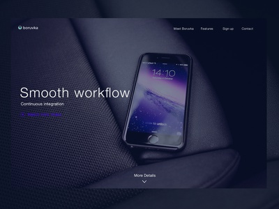Boruvka website  landing page car website boruvka stachecka marta minimal mobile modern