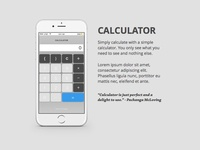 Daily Ui: Day 4 - Calculator