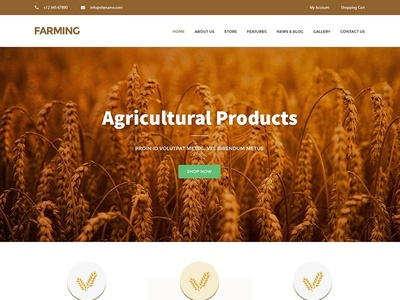 Professional Agriculture Website Design & Template