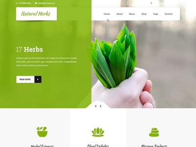 Template for Herbal Website